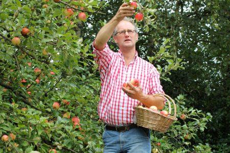 Fruitbedrijf Landwinkel Goense